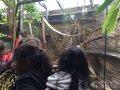 salesianske_stredisko_mladeze_vylet-do-zoo18